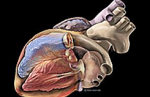 Powinno być 120 transplantacji serca rocznie