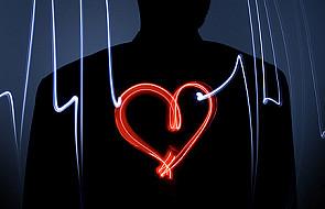 Komórki szpiku pomogą zregenerować serce