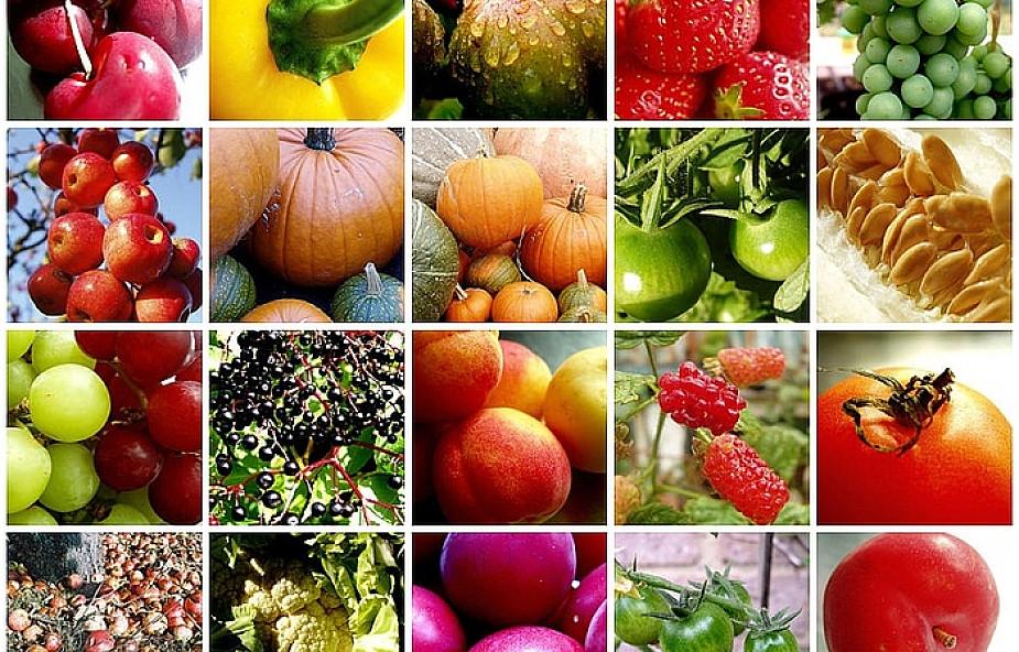 Owoce i warzywa mogą chronić przed rakiem?