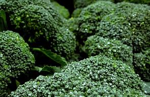 Składnik brokułów niszczy raka piersi
