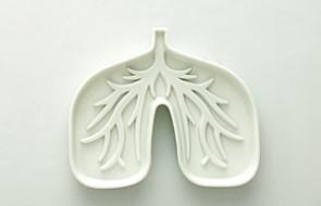 Mukowiscydoza - przeszczepy płuc w Zabrzu