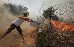 Grecja płonie: pożary lasów w Attyce