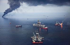 Ekspedycja ekologów zbada skutki wycieku ropy
