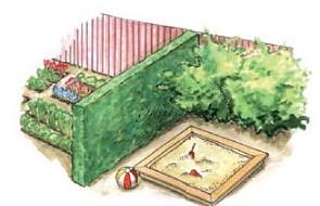 Zielone przegrody w niewielkich ogrodach