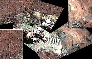 Bądź na bieżąco z misjami i zdjęciami NASA!