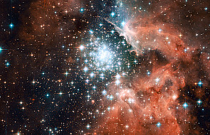 Rusza ogólnoświatowe liczenie gwiazd