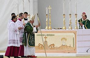 Papież zawierzył Kalabrię opiece Matki Boskiej