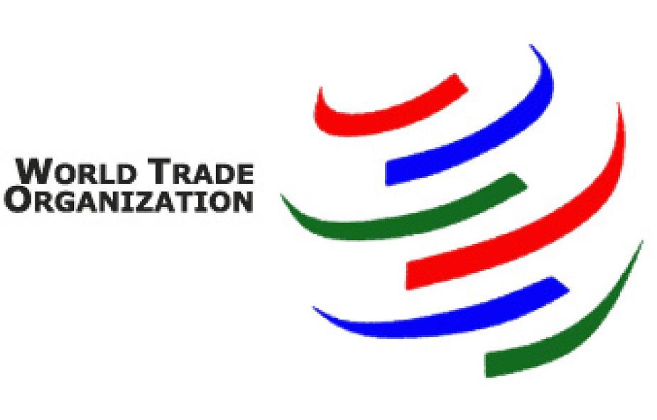 Gruzja otwiera Rosji drogę do WTO