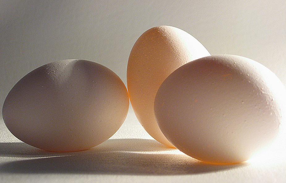 Jajko symbolem życia dla większości kultur