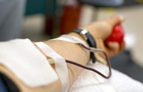 Dziś Światowy Dzień Krwiodawcy