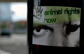 Prawa człowieka a prawa zwierząt