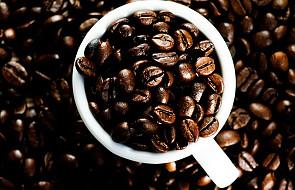 Kawa w nadmiarze wywołuje halucynacje