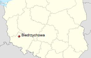 Biedrzychowa: 29 rannych w wypadku autobusu