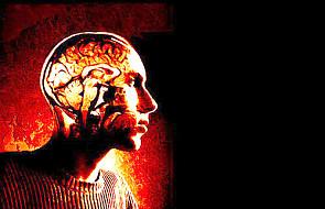 Mózg oszukuje nas na każdym kroku