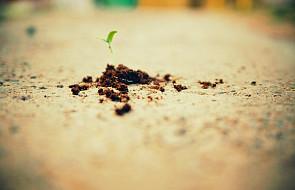 Życie połamane, życie odbudowane…
