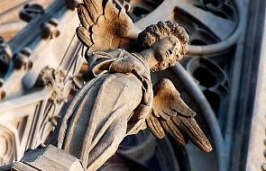 O zapomnianych aniołach