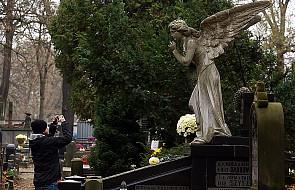 Współczesne cmentarze to blokowiska