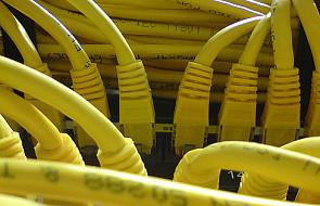 MAC: stanowisko ws. zarządzania internetem