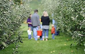 Rytm życia rodzinnego w wychowaniu dzieci