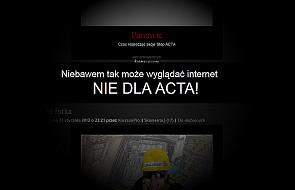 Zobowiązania rządu ws. dokumentacji ACTA