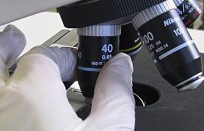 Kwestia in vitro. Jak reguluje się ją w Europie