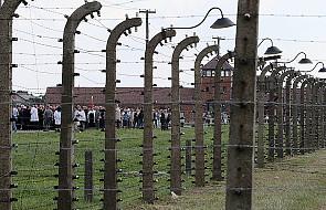 Zatrzymany za kradzież w Auschwitz zwolniony