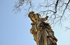 Dlaczego z taką czcią zwracamy się do Maryi?