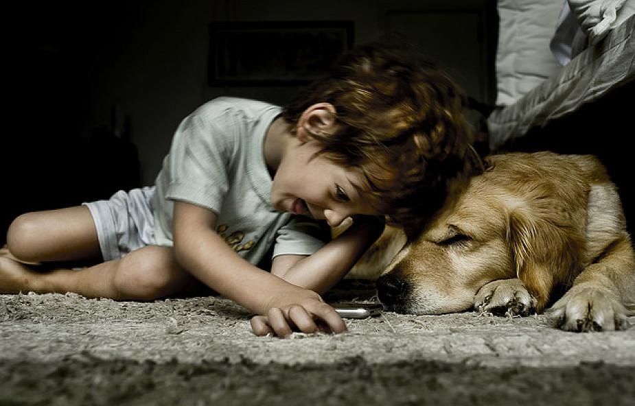"""""""Zwierzęta ofiarują nam rzadko spotykany dar"""""""