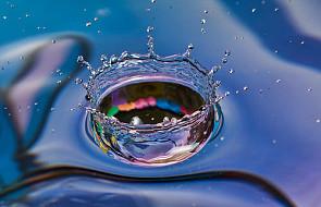 Śląski detektor jakości wody wchodzi na rynek