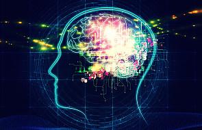 Tabu śmierci mózgowej