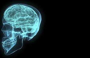"""Czytanie może """"przeprogramować"""" mózg"""