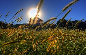 Podaruj sobie więcej słońca i żyj lepiej