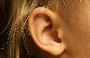 Cement w uchu pomaga słyszeć