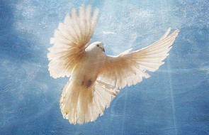 Weźmy Ducha Świętego! - J 20, 19-23