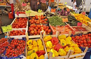 Rosja chce uniezależnić się od importu warzyw