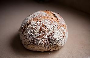 Jeść chleb czy nie jeść? Oto jest pytanie!