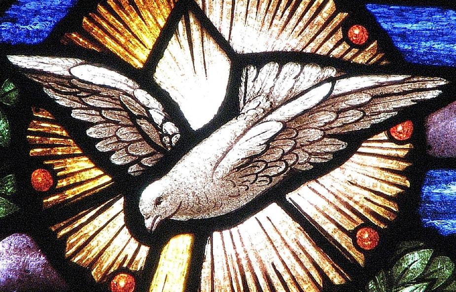 Branie nie jest egoizmem - Łk 10, 17-24