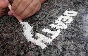 """Proces ws. """"przemytu"""" kokainy przekazany do USA"""