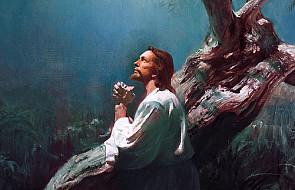 Bóg daje nam wrażliwość Jezusa