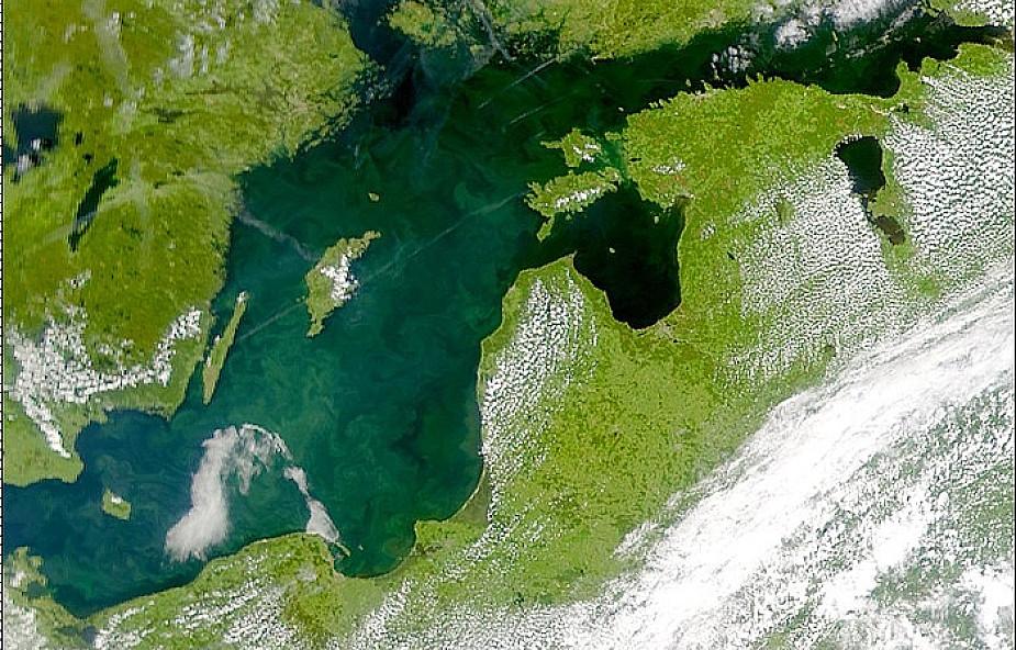 Powstanie mapa poziomu hałasu w Bałtyku