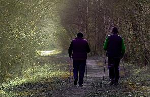 Jak rehabilitować chorych na Parkinsona?
