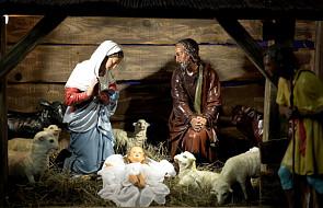 Zwiedź z rodziną Bożonarodzeniowe szopki