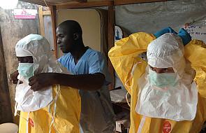 W Afryce malaria zabija więcej ludzi niż ebola