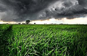 Miłość powoduje burzę w organizmie