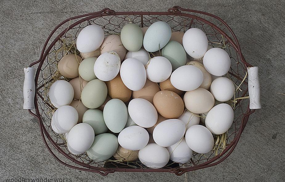 Kurze jaja jadano już w średniowieczu