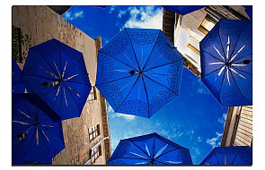 Z parasolkami namawiają do modlitwy