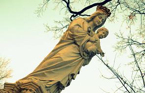 Nabożeństwa majowe - znaczenie i tradycja