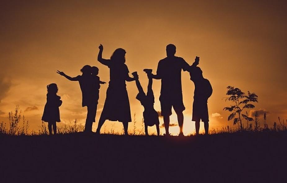 """""""Family mainstreaming"""" w Unii Europejskiej"""