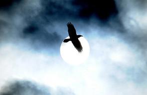 O wypędzaniu złego ducha - J 14, 27-31a