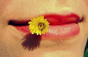 Podreperuj wiosną zdrowie. Jak? Jedząc kwiaty